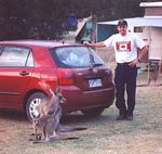 0007___kangaroo_and_brent_by_rental_car