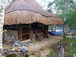 007 (Palapa aka. The Cat House)