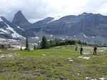 Cdn Rockies Adventure (Aug 2010) - Talus - 077